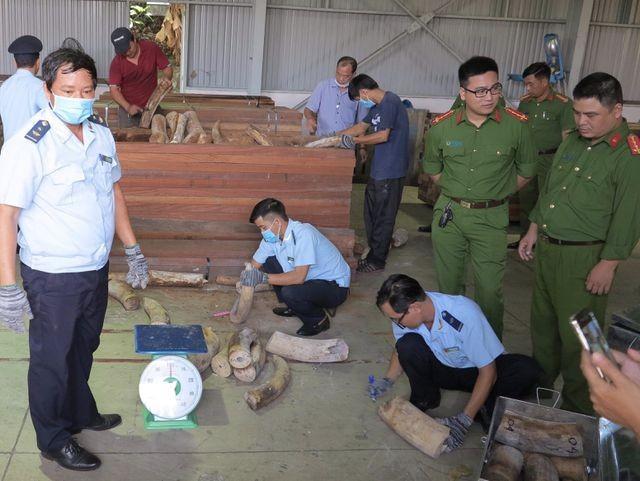 Đà Nẵng: Phát hiện hơn 9 tấn hàng nghi là ngà voi bọc gỗ để nguỵ trang - ảnh 1