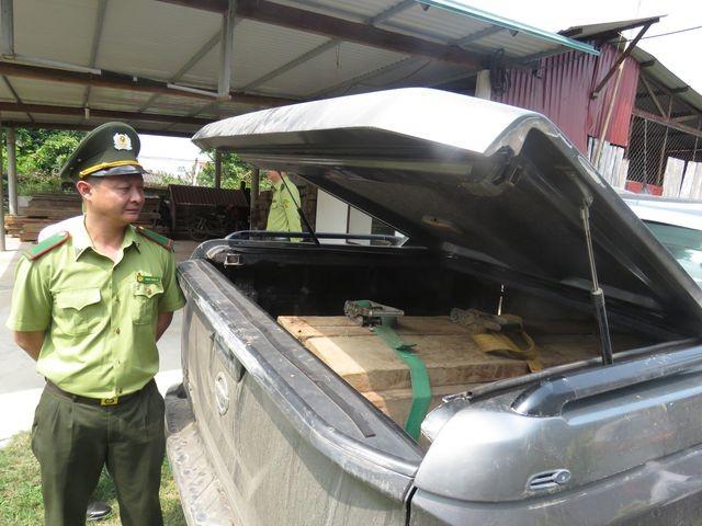 Quảng Bình: Bắt xe bán tải lắp biển giả, vận chuyển gỗ lậu - ảnh 1