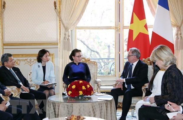 Chủ tịch Quốc hội hội đàm với Chủ tịch Hạ viện Pháp - ảnh 1