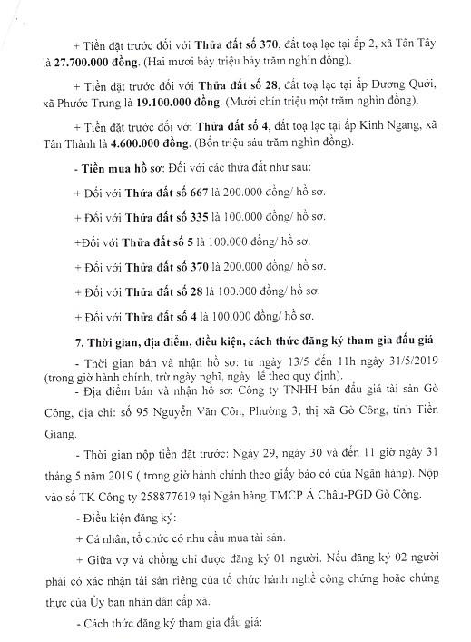 Ngày 3/6/2019, đấu giá quyền sử dụng đất tại huyện Gò Công Đông, tỉnh Tiền Giang - ảnh 5