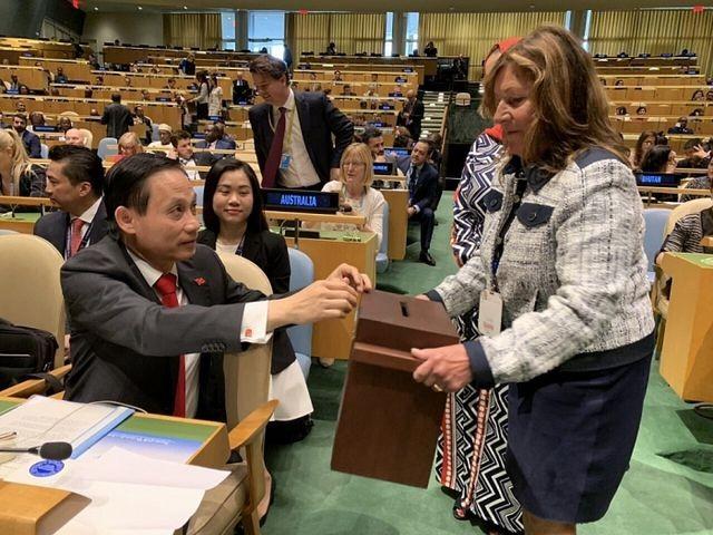 Việt Nam đắc cử Ủy viên không thường trực Hội đồng Bảo an với số phiếu kỷ lục 192/193 - ảnh 1