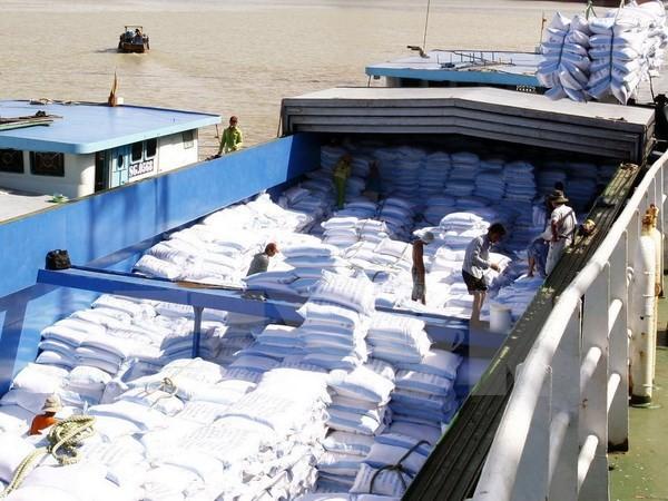 Vận chuyển gạo xuất khẩu. (Nguồn: TTXVN)
