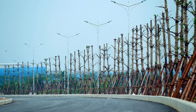 Tuyến đường 1.500 tỷ kết nối 3 quận sắp khánh thành - ảnh 6