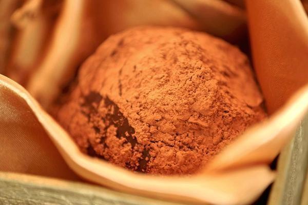 Viên sô-cô-la được bao phủ bởi 1 loại nấm độc. (Nguồn: CNBC)