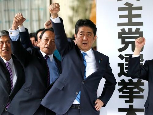 Nhật Bản giải tán Hạ viện, tổ chức bầu cử sớm - ảnh 1