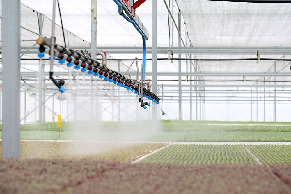 Tính đến nay, VinEco đã đưa vào thị trường hơn 200 chủng loại sản phẩm rau, củ, trái cây, trong đó có các sản phẩm cao cấp được sản xuất trong nhà kính Israel