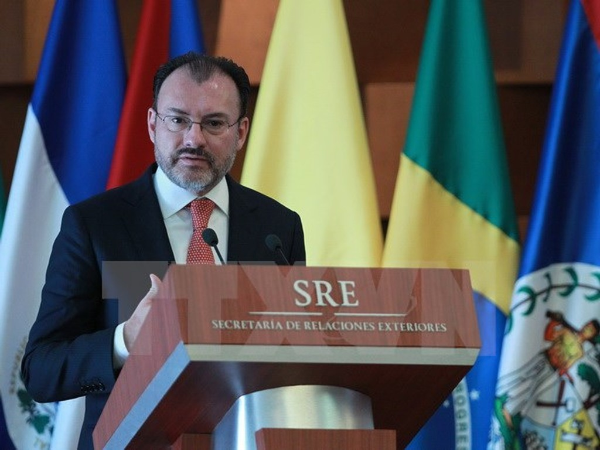 Ngoại trưởng Mexico Luis Videgaray. (Nguồn: EPA/TTXVN)