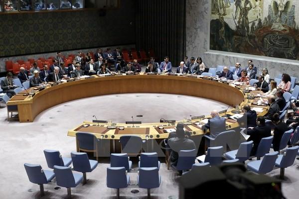 Toàn cảnh một cuộc họp của Hội đồng Bảo an Liên hợp quốc ở New York, Mỹ. (Nguồn: AFP/TTXVN)