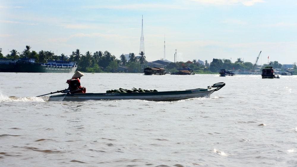 Sông Mekong có vai trò đặc biệt, nuôi dưỡng hai vùng kinh tế trọng điểm là Đồng bằng sông Cửu Long và Tây Nguyên. Ảnh: Hoài Tâm