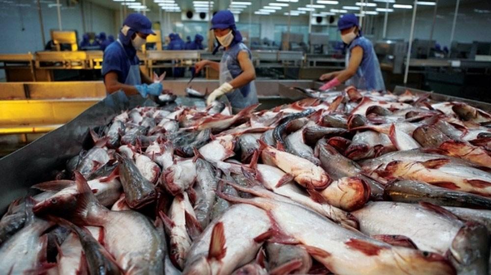 Lũy kế 6 tháng đầu năm 2018, lợi nhuận sau thuế của cổ đông của Công ty mẹ - Thủy sản Hùng Vương đang âm 264,76 tỷ đồng.