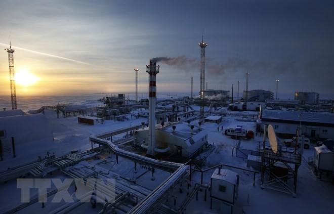 Cơ sở lọc dầu của Tập đoàn Gazprom tại Cape Kamenny. (Nguồn: AFP/TTXVN)