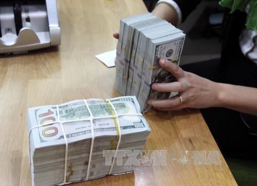Giá USD sáng nay tăng mạnh. Ảnh minh họa: TTXVN