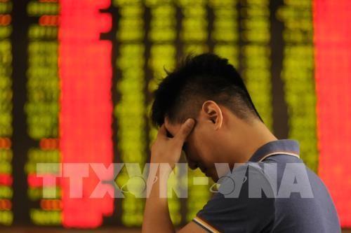 Nhà đầu tư theo dõi chứng khoán tại sàn giao dịch ở Hình Đài, tỉnh Hà Bắc, Trung Quốc. Ảnh: THX/TTXVN