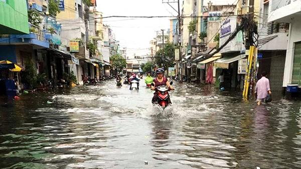 Công ty CP Công trình giao thông Sài Gòn từng trúng thầu gói thầu gần 120 tỷ đồng tại công trình cải tạo hệ thống thoát nước đường Kinh Dương Vương (TP.HCM)