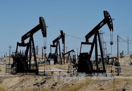 Giá dầu tăng 0,5% trên thị trường châu Á sáng 10/9. Ảnh: AFP/TTXVN