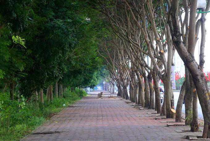 Hệ thống giao thông gần 10.000 tỷ đồng ở quận Long Biên - ảnh 5