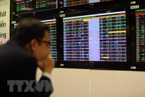 Nhà đầu tư theo dõi giao dịch tại sàn giao dịch Công ty Chứng khoán Vietcombank. Ảnh: Tuấn Anh/TTXVN
