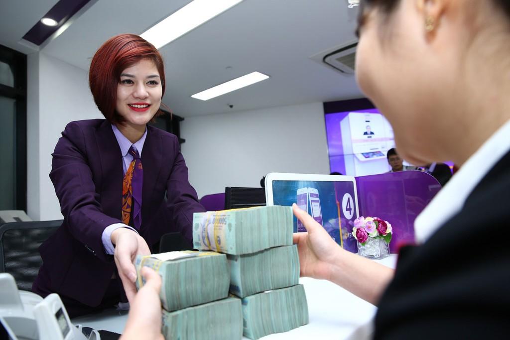 Nền kinh tế Việt Nam đang phụ thuộc quá nhiều vào các tổ chức tín dụng. Ảnh: Lê Tiên