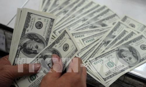 Tỷ giá đồng USD ổn định. Ảnh: AFP/TTXVN