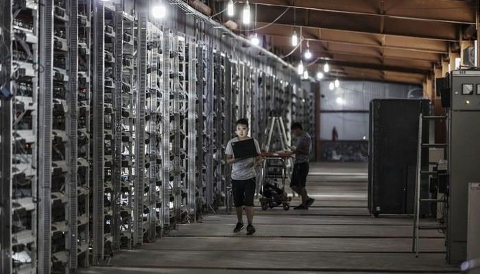 Bên trong một mỏ Bitcoin của Bitmain ở Mông Cổ - Ảnh: Bloomberg.