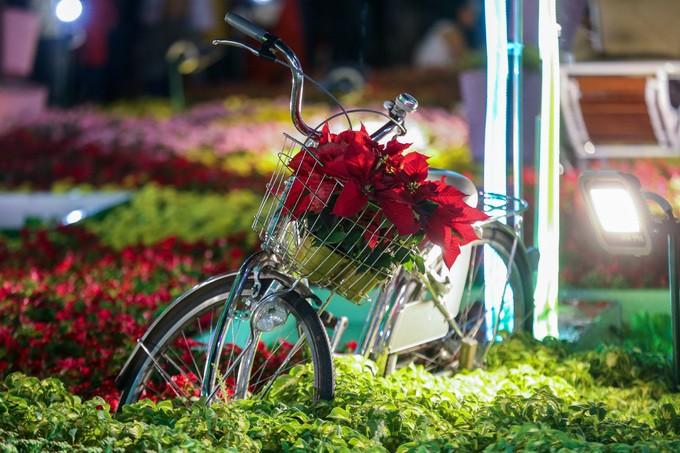 Đông nghịt người dân tham quan đường hoa Nguyễn Huệ - ảnh 12