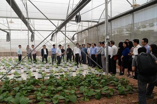 VNPT Technology phát triển giải pháp IoT thông minh hỗ trợ nông nghiệp - ảnh 1