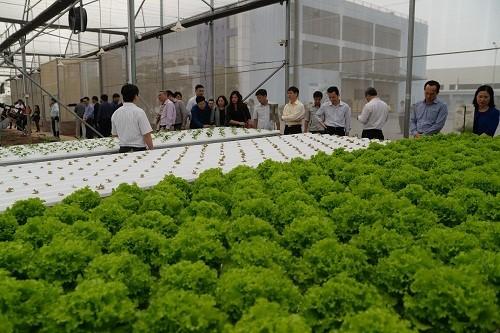 VNPT Technology phát triển giải pháp IoT thông minh hỗ trợ nông nghiệp - ảnh 2