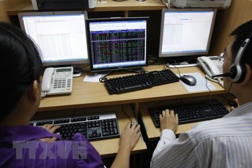 Chứng khoán ngày 11/4: Điểm sáng cổ phiếu thủy sản. Ảnh: TTXVN