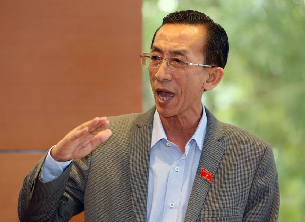 Đại biểu Trần Hoàng Ngân (Đoàn thành phố Hồ Chí Minh). Ảnh Internet