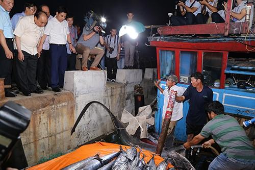 Bộ Y tế công bố hải sản bốn tỉnh miền Trung 'bảo đảm an toàn' hình 1