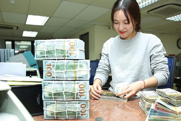 Ngân hàng Nhà nước dự kiến kéo dài cho vay USD ngắn hạn đến hết năm 2018 đối với doanh nghiệp có đủ nguồn thu xuất khẩu để trả nợ. Ảnh: Quang Ngọc