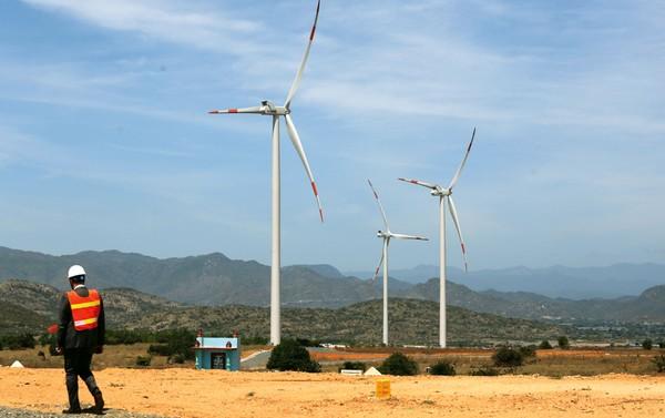Cả nước hiện có 7 nhà máy điện gió đã được đưa vào vận hành với tổng công suất lắp đặt là 331 MW. Ảnh: Lê Tiên