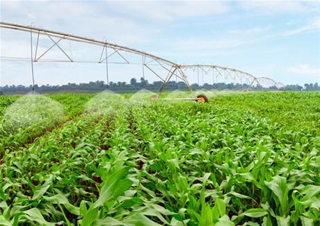 Để hình thức đầu tư PPP được áp dụng rộng rãi hơn trong nông nghiệp