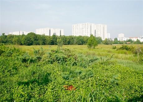 Miễn, giảm tiền thuê đất cho dự án đầu tư xã hội hóa tại TP.HCM