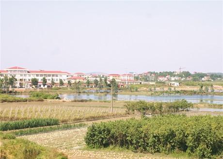 Một số địa phương chậm cải cách thủ tục hành chính về đất đai