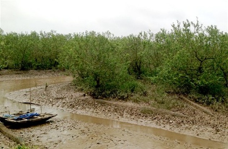 Thiếu rất nhiều vốn đầu tư để ứng phó với biến đổi khí hậu trong nông nghiệp