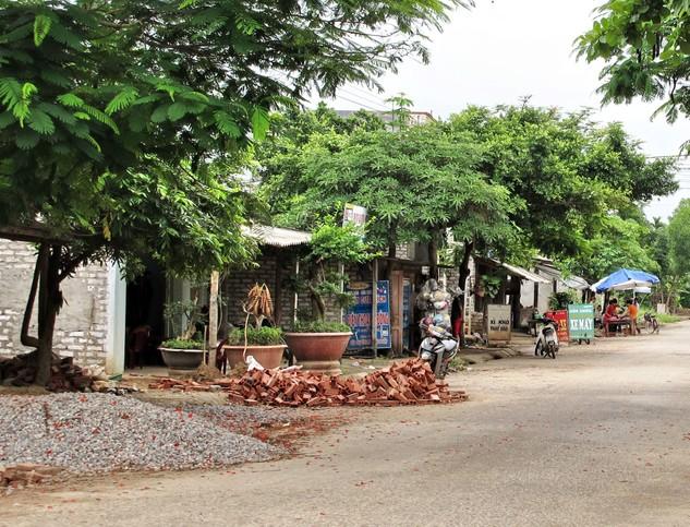 Đấu giá Quyền sử dụng đất và tài sản gắn liền với đất tại huyện Hữu Lũng, tỉnh Lạng Sơn