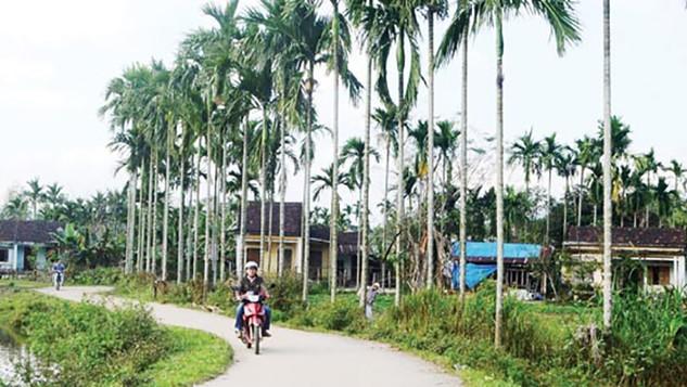 Theo dự kiến, tổng kế hoạch vốn ngân sách tỉnh Quảng Ngãi là 95 tỷ đồng.