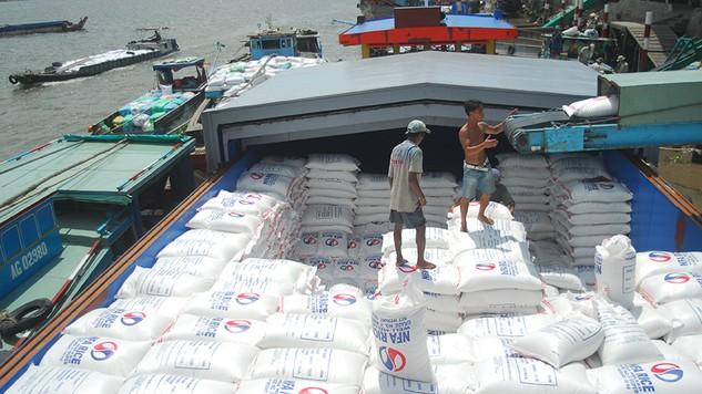 Trong dự thảo sửa đổi sẽ có điều chỉnh nhằm tạo điều kiện giúp doanh nghiệp kinh doanh xuất khẩu gạo hội nhập sâu và hiệu quả với thị trường thế giới. Ảnh:Tường Lâm