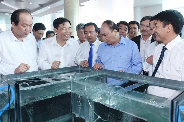 Thủ tướng Chính phủ Nguyễn Xuân Phúc thăm khu vực trưng bày tôm giống.
