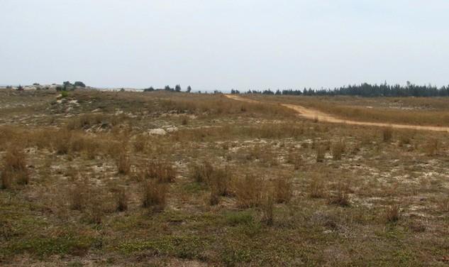 Đấu giá Quyền sử dụng đất tại thị xã Long Mỹ, tỉnh Hậu Giang