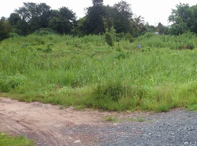 Đấu giá Quyền sử dụng đất tại huyện Phú Vang, tỉnh Thừa Thiên Huế