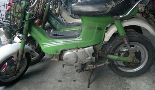 Đấu giá lô xe mô tô 52 chiếc tại tỉnh Bạc Liêu
