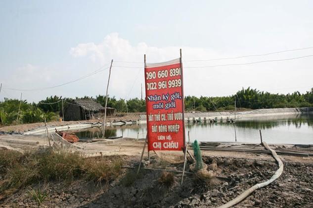 Giá đất tại Cần Giờ đang sốt nóng