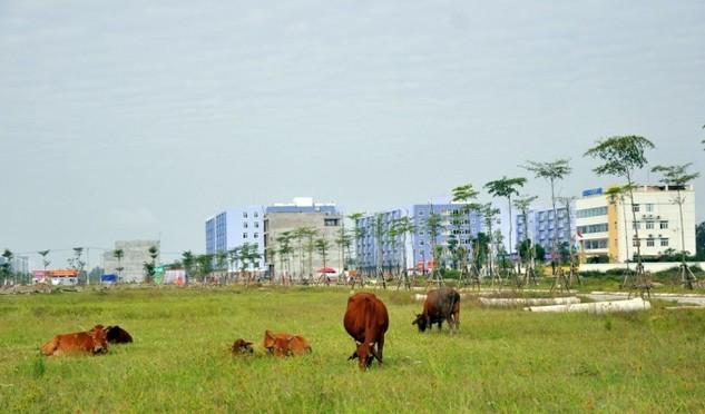 Một góc Khu đô thị Thanh Hà.