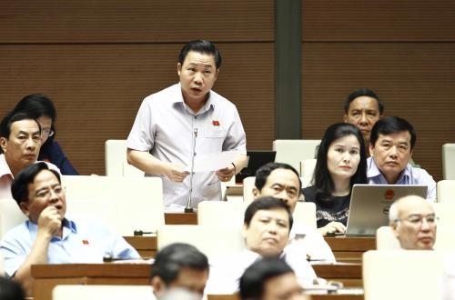 Đại biểu Quốc hội tỉnh Bến Tre Lưu Bình Nhưỡng phát biểu ý kiến. Ảnh: TTXVN
