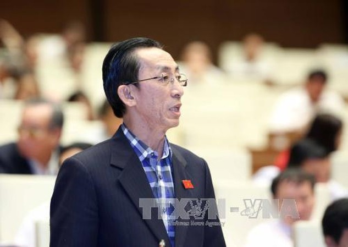 Đại biểu Trần Hoàng Ngân (Đoàn Tp. Hồ Chí Minh). Ảnh: TTXVN
