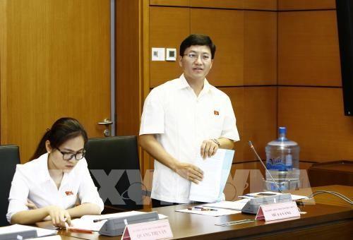 Đại biểu Quốc hội tỉnh Điện Biên Mùa A Vảng phát biểu tại tổ. Ảnh: TTXVN