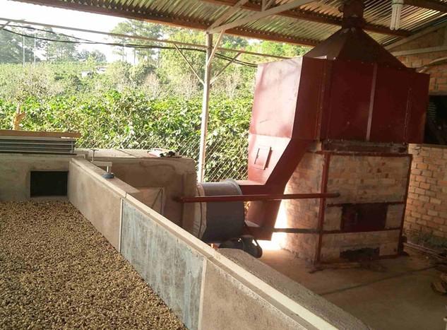 Mức hỗ trợ cho doanh nghiệp đầu tư vào nông sản sạch còn quá khiêm tốn. Ảnh: Tất Tiên