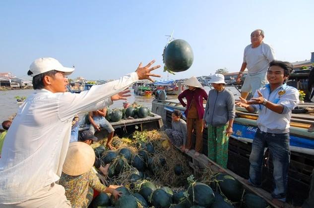 TPP sẽ không phải là thần dược, tự động đưa Việt Nam ra tầm cao mới như mong đợi, song cũng là cơ hội hiếm có để chúng ta bơi ra biển lớn. Ảnh minh họa: Ngọc Trinh.